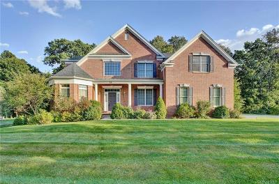 Dutchess County Single Family Home For Sale: 13 Chestnut Street