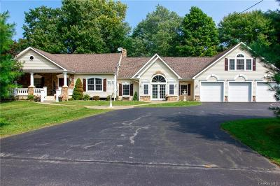 Dutchess County Single Family Home For Sale: 67 Spring Road