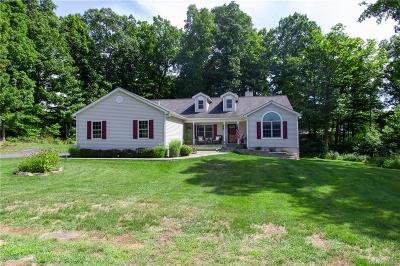 Dutchess County Single Family Home For Sale: 146 New Hackensack Road