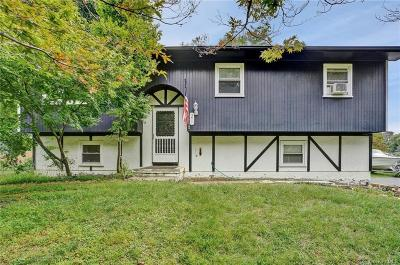 Dutchess County Single Family Home For Sale: 21 Montfort Road