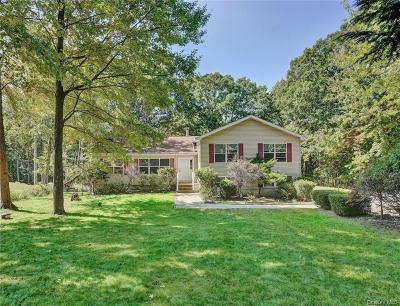 Dutchess County Single Family Home For Sale: 300 Johnson Road