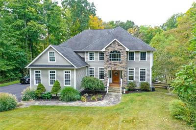 Dutchess County Single Family Home For Sale: 223 Windsor Road