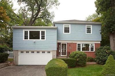 Westchester County Single Family Home For Sale: 52 Lewis Parkway