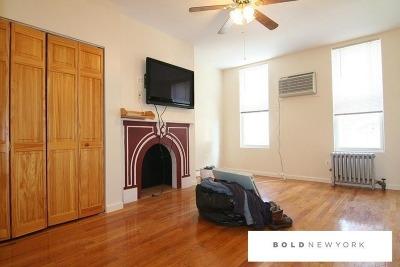 Williamsburg Unit For Rent For Rent: 207 Leonard St #6th Floo