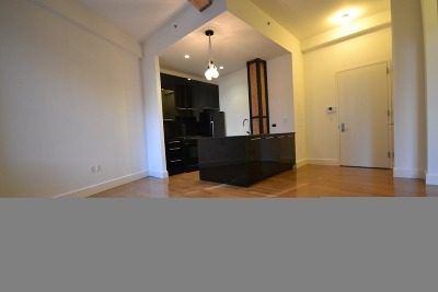Williamsburg Unit For Rent For Rent: 487 Keap St #6th Floo