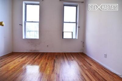 Williamsburg Unit For Rent For Rent: 903 Metropolitan Ave