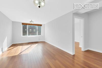 Queens Unit For Sale For Sale: 30-85 Vernon Blvd