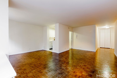 Unit For Rent For Rent: 245 E 44th St
