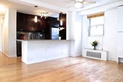 Manhattan Unit For Sale For Sale: 165 Park Row