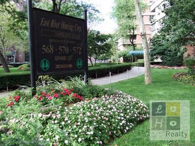 Manhattan Unit For Sale For Sale: 570 Grand St