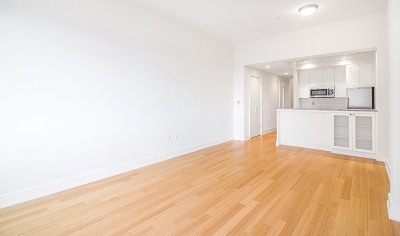 Brooklyn Heights Unit For Rent For Rent: 75 Clinton St
