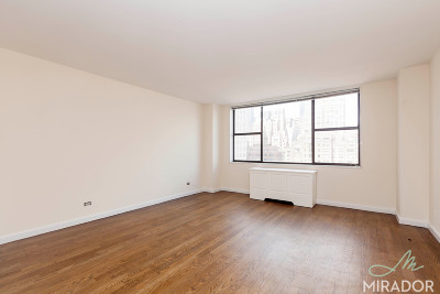 Manhattan NY Unit For Rent For Rent: $3,050