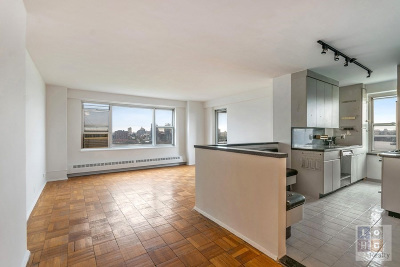 Manhattan Unit For Sale For Sale: 453 Fdr Dr