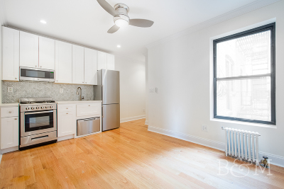 Williamsburg Unit For Rent For Rent: 380 S 4th St