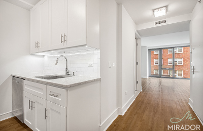 Manhattan NY Unit For Rent For Rent: $6,395