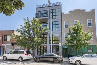 Williamsburg Unit For Sale For Sale: 404 Grand St