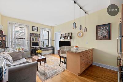 New York Unit For Sale For Sale: 485 Central Park W