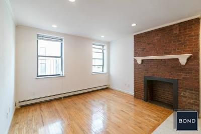 Manhattan Unit For Rent For Rent: 175 Orchard St
