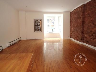 Brooklyn Heights Unit For Rent For Rent: 60 Pineapple St