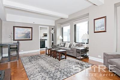 Unit For Rent For Rent: 160 Central Park S
