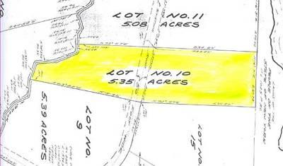 Bethel Residential Lots & Land For Sale: (40-1-92.8) Little Black Lake Road