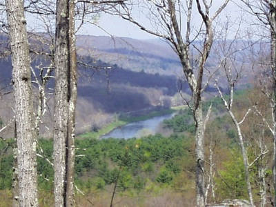 Narrowsburg Residential Lots & Land For Sale: Lot #4 Eagle View Road