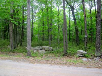 Residential Lots & Land For Sale: (3.2) Hallenbach Road