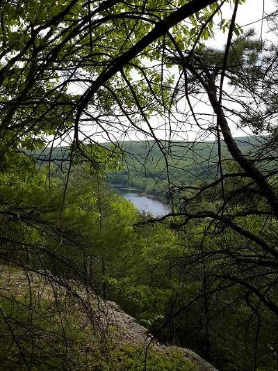 Narrowsburg Residential Lots & Land For Sale: Nys Route 97