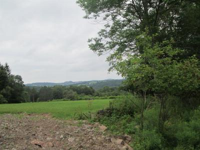 Residential Lots & Land For Sale: Fulton Hill Rd.