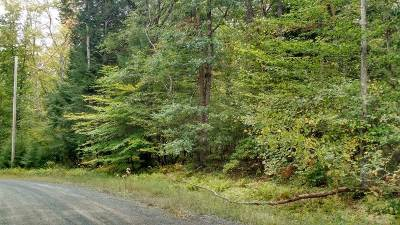 Narrowsburg Residential Lots & Land For Sale: Lot 71 Perry Pond Rd