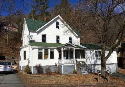 Callicoon Multi Family Home For Sale: 18 Mill Street