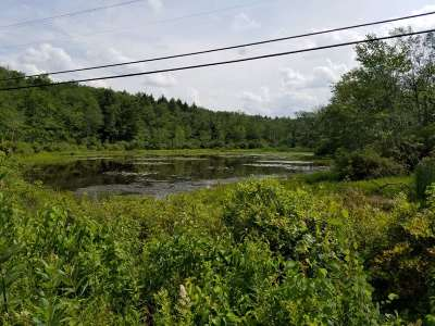 Swan Lake NY Residential Lots & Land For Sale: $49,000