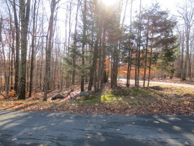 Forestburgh Residential Lots & Land For Sale: E. Lake Joseph Rd