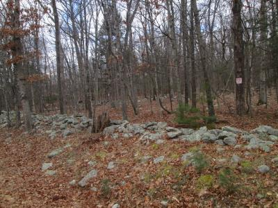 Residential Lots & Land For Sale: 71.1.24 South Road