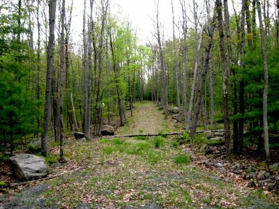 Narrowsburg Residential Lots & Land For Sale: (6.9) Route 97