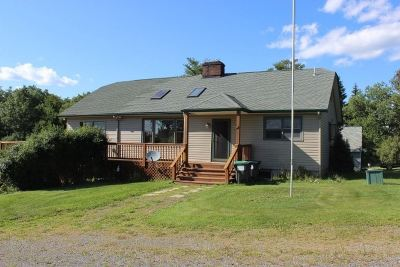 Sullivan County Single Family Home For Sale: 298 Lakeview Drive Road