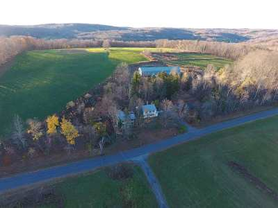 Livingston Manor NY Single Family Home For Sale: $389,000