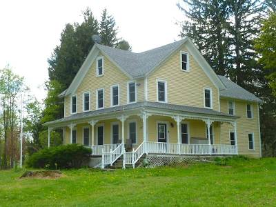 Callicoon Single Family Home For Sale: 133 Schwartz