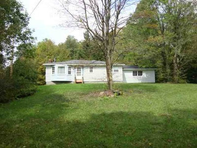 Livingston Manor, Roscoe Single Family Home For Sale: 2777 Holiday Brook Rd