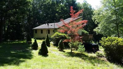 Glen Spey Single Family Home For Sale: 182 Rio Dam Road