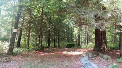 Narrowsburg Residential Lots & Land For Sale: Lot #62 Perry Pond Road