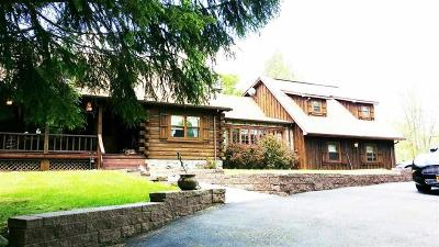 Mountaindale NY Single Family Home For Sale: $549,000