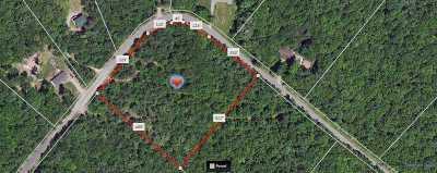 Narrowsburg Residential Lots & Land For Sale: Lot #1 Maple Lane
