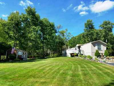 Parksville NY Single Family Home For Sale: $45,000