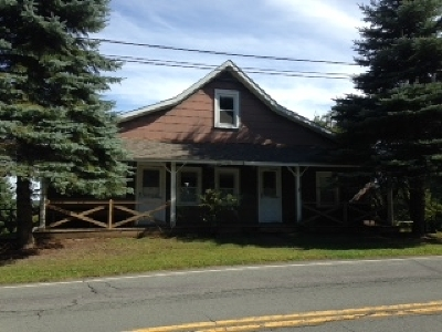 Livingston Manor NY Single Family Home For Sale: $125,000