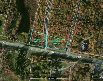 Bethel Residential Lots & Land For Sale: State Rt. 17b
