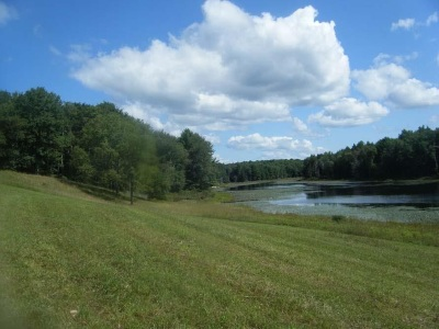 Bethel Residential Lots & Land For Sale: 40.-2-30 Black Lake Road