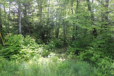 Roscoe NY Residential Lots & Land For Sale: $44,900