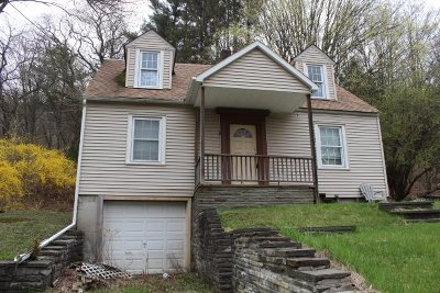 Roscoe NY Single Family Home For Sale: $58,000