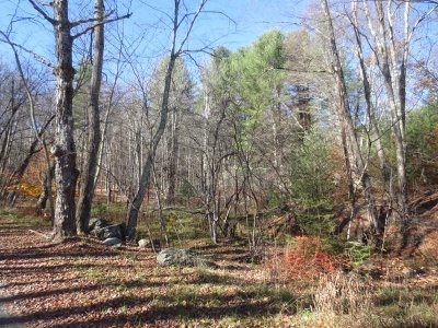 Bethel Residential Lots & Land For Sale: Plank Rd.